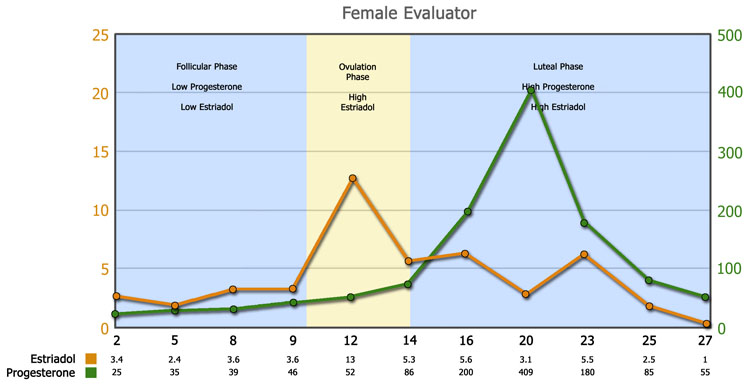 female evaluato-r graph sample